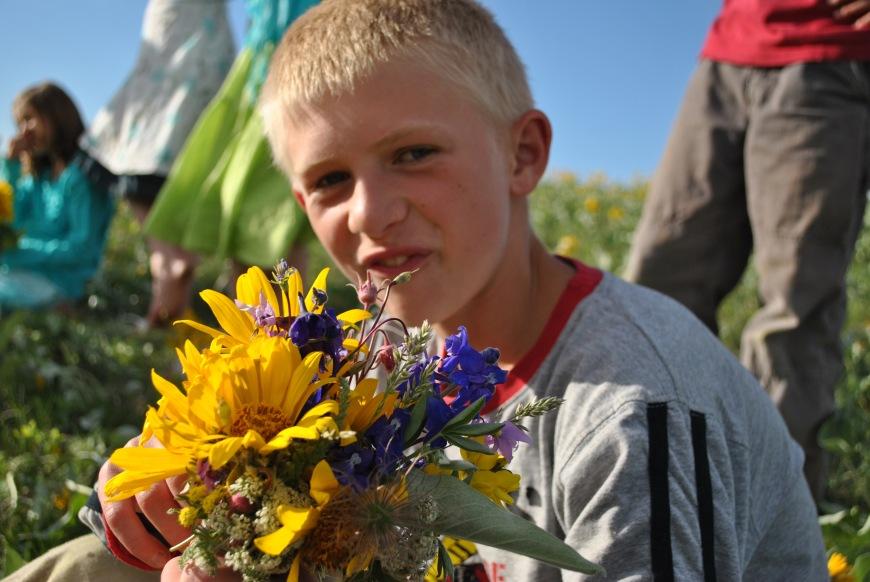 e sunflowers