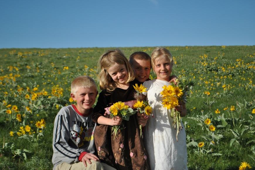 kids sunflowerss