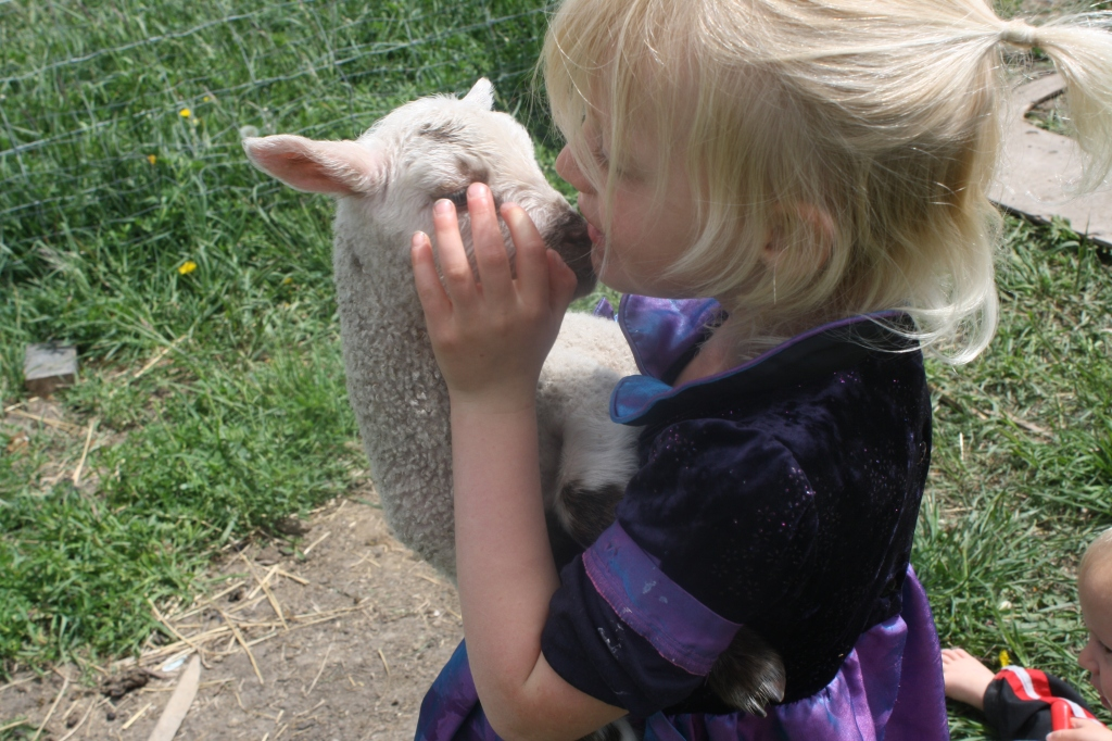 Kissing the Lamb