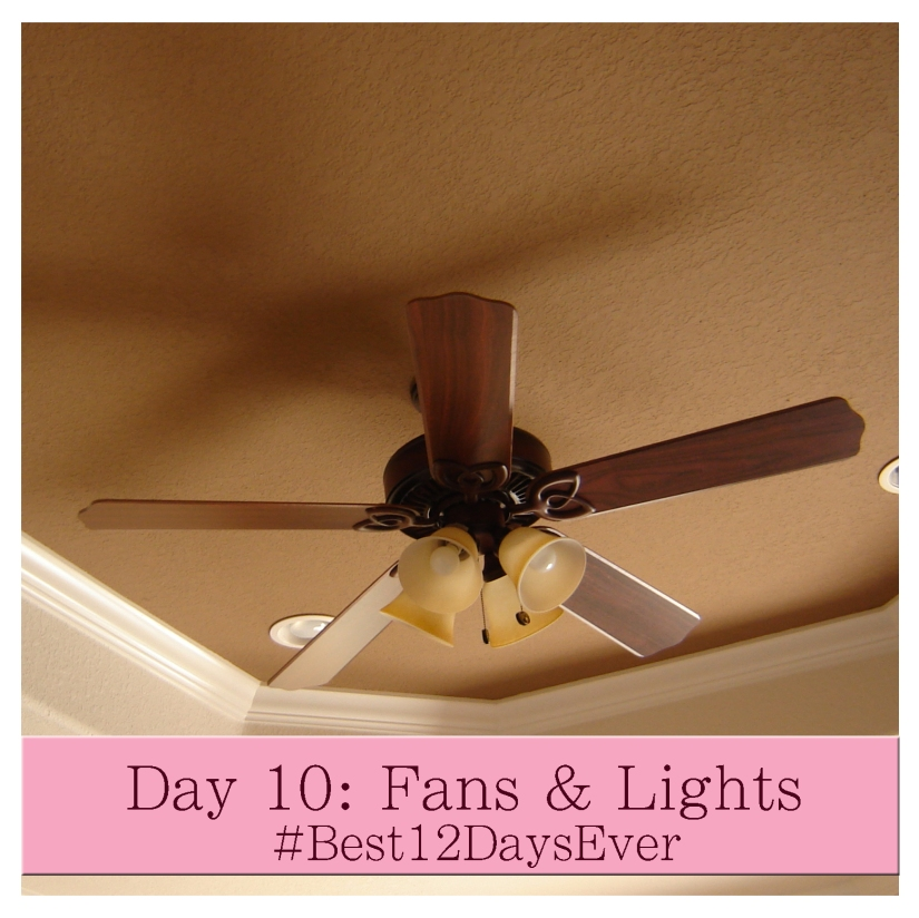 Day 10 Fans
